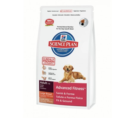 Hill's Science Plan Canine Adult Large Breed cu miel si orez 12 kg