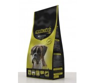 ADDICTION DOG Adult 15kg MIEL & OREZ
