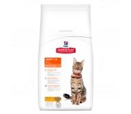 Hill's SP Adult Optimal Care hrana pentru pisici cu pui 5 kg